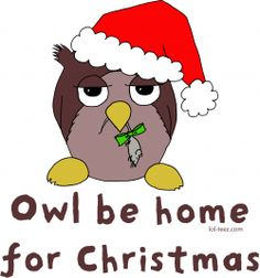 Owl be home for Christmas gifts!  Such cute shirts, cards, and more.  Great idea!