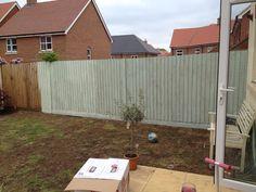 First coat cuprinol fresh rosemary Garden Fence Paint, Garden Fencing, Garden Landscaping, Garden Front Of House, Lawn And Garden, Back Gardens, Small Gardens, Fence Design, Garden Design
