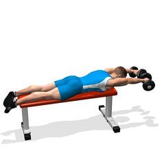 Prime 15 Best Flat Bench Workout Images Workout Exercise Gym Andrewgaddart Wooden Chair Designs For Living Room Andrewgaddartcom