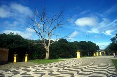 Bosque de Portugal - Curitiba, Brazil