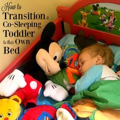 Transitioning a co-sleeping toddler to their own bed can seem like an impossible task, but it's easier than you think and it WILL happen. Here are some tips to help with the co-sleeping transition! Toddler Meme, Diy Toddler Bed, Toddler Bedtime, Toddler Fun, Toddler Stuff, Kids Sleep, Baby Sleep, Baby Baby, Cosleeping Toddler