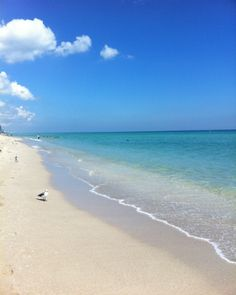 The weekend weather forecast calls for a #beach getaway.  Sunny Isles Beach, just minutes away from your residence at #151atBiscayne.   Explore what else is around.