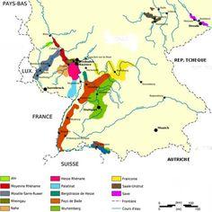 Les régions viticoles allemandes
