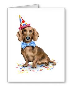 Hey, I found this really awesome Etsy listing at https://www.etsy.com/listing/263909862/dachshund-birthday-card-6-pk-note-cards