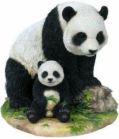 06157e2af35e4 25 Best Pandas images