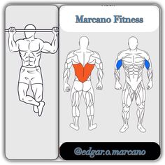 #gymtime. #gymmotivation #motivation #fitnesstime. #marcanofitness. #fitness. #big. #fuerza. #fitnessexercises. #fitness_exercises #strong. #hard. #energy. #performance. #live. #vida. #health. #salud. #sports. #deportes. #fitnessMotivation. #motivation. #
