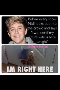 """I didn't know that he says this. So sweet. And yet evey single girl (no pun intended) in the arena says """"I'M RIGHT HERE, NIALL! COME AND FIND ME!"""""""