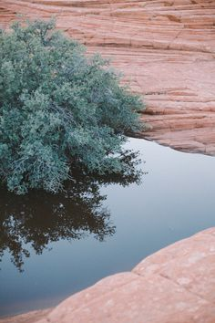 lovely pictures of red rocks | the daybook