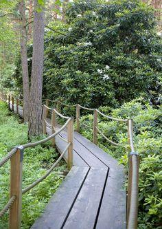 10 Best Landscaping Ideas for Backyard – Gardening Decor Bog Garden, Garden Steps, Garden Cottage, Garden Paths, Garden Bridge, Landscape Stairs, Beach Landscape, Wood Walkway, Patio Pergola