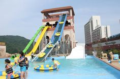 #Bogwang #Korea http://www.blooloop.com/CompanyDetails/Polin-Waterparks-and-Pool-Systems/679