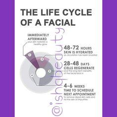 Life cycle of a facial...  Skin causing you problems?  Why not book a aromatherapy facial.  #minifacial #specialistfacial #luxuryfacial  @ishqbeauty #ishqbeauty #ishqbeautyuk #swansea #gower #uk #london #cardiff #dubai #Pakistan #Iran #pursian #facial #clearskin #luxury #wales #timetorelax #timeout #massage #headmassage #aromatherapy #evetaylor #thepowerofoil #plantbased #naturalproducts