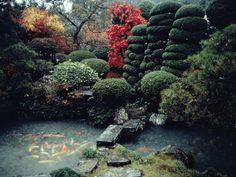 Photo: A private Japanese garden with koi pond, sculpted evergreens, and colorful fall foliage