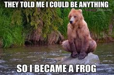 funny animal memes | Best of Wildlife Memes - They tole me I could be anything - Bear