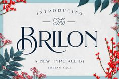 Ad: Brilon is an elegant serif font inspired by the Art Deco era. It perfectly represents vintage esthetics in a modern and minimalist way. The font includes special uppercase letters, alternate characters and beautiful ligatures. Furthermore it comes with 8 botanical photos which I used in this product presentation! The font is perfect for elegant logo design, packaging or invitation cards.$19 #sponsored