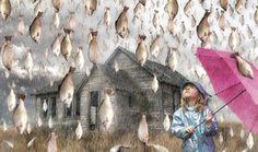 Realmente pueden caer peces del cielo? esto dice la ciencia