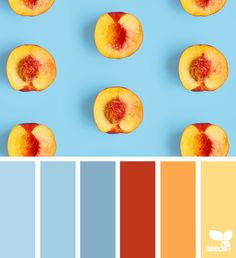 chambray Archives | Page 2 of 18 | Design Seeds
