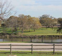 LBJ Ranch, Texas; copyright Mimi Yu