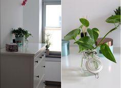 Grünes badezimmer ~ Mein grünes badezimmer planters