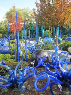 Chihuly's glass museum, Seattle Center.
