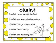 Starfish Info | Scribd