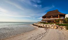 This boutique hotel is located on the secluded island of Isla Holbox in front of the ocean. Quintana Roo Mexico, Cancun Mexico, Gulf Of Mexico, Vacation Planner, World Images, Mexico Vacation, Caribbean Sea, Beautiful Islands, Swimming Pools