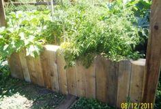 Transform an old hot tub into a garden . . .