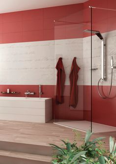Beauty Area Webert By Hafele Luxury Shower, Indian Kitchen, Faucet, Mirror, Bathroom, Inspiration, Beauty, Design, Indian Cuisine