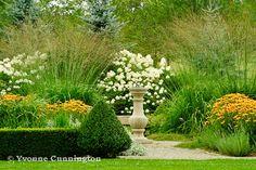 Rudbeckia , the grass is tall moor grass (Molinia arundinacea 'Skyracer'); in the back, Limelight hydrangea