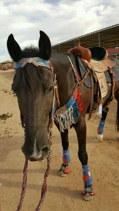 Western Horse Tack, Horse Barns, Western Saddles, Horse Stalls, Cute Horses, Pretty Horses, Beautiful Horses, Barrel Racing Horses, Barrel Horse