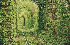 Train Garden