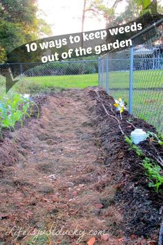 10 Ways To Keep Weeds Out Of Your Garden - Who has time to pull weeds? Not Me! Learn how to keep weeds out!