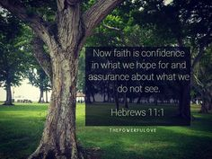Now faith is confidence in what we hope for and assurance about what we do not see.  Hebrews 11:1  #love #instagood #tbt #beautiful #photooftheday #justgoshot #peoplecreatives #quotesoftheday #quotes #alkitab #bible #biblequotes #bibleverse #l4l #instacool #positive #positivevibes  #positivethinking #jesus #motivasi #motivationalquotes #motivation #inspiration #inspiring #inspirasi #inspirationalquotes  #bestoftheday  #pinterest #IFTTT #IFTTT