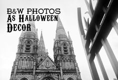 Get Free Black and White Photos for Halloween Decor