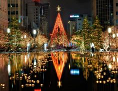 Outstanding examples of Christmas photography are displayed here. Christmas celebrated on December of every year is one of the most popular festivals celebrated all over the world. Christmas Lights Background, Diy Christmas Lights, Christmas In Paris, Xmas Lights, Holiday Lights, All Things Christmas, Christmas Time, Christmas Decorations, Christmas Markets