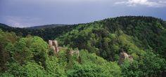 Vue panoramique et verdoyante.