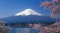 11 DÍAS EN JAPÓN