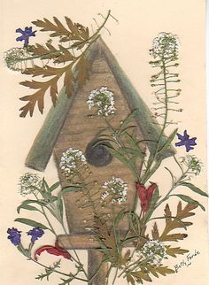 pastel drawn birdhouse with pressed sweet alyssum & other flowers.