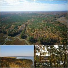 20 minutes northeast of the historic city of Williamsburg, York River Preserve presents a unique opportunity to acquire a substantial real estate holding in the heart of the Chesapeake Bay region. Recently reduced, this 2,700± acre property features extensive tidal river frontage, remarkable natural beauty and diversity, and convenient proximity to desirable metropolitan areas.