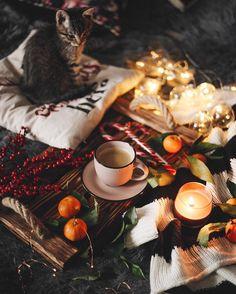 "6,466 Likes, 46 Comments - Ana Markovych (@anamarkovych) on Instagram: ""How do you spend this second winter evening? ❤️️ Як проводите цей вечір п'ятниці? По-зимовому: у…"""