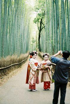 Bamboo Groves Arashiyama, Kyoto 嵐山 京都 by Porkchopsandy I Flickr.