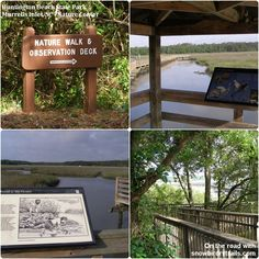 Huntington Beach State Park - take a walk on the wild side! Rv Parks, State Parks, Murrells Inlet Sc, Pops Restaurant, Local Moms, Best Campgrounds, Huntington Beach, Walking In Nature, Beautiful Beaches