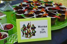 Teenage Mutant Ninja Turtles Birthday Party Ideas | Photo 1 of 37