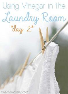 Vinegar Tips - Laundry, Day 2 - Ask Anna