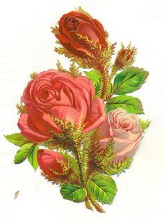 large victorian scrap pink roses