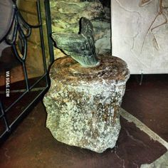 A megalodon tooth stuck in a whale vertebrae. This is the most badass fossil in existence.