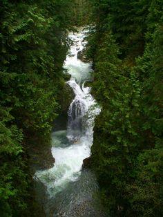 Lynn Canyon North Vancouver
