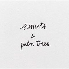 sunsets & palm trees