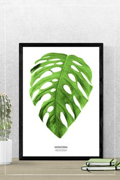 Monstera Deliciosa – The Lovely Things Monstera Deliciosa, Under Construction, Lovely Things, Plant Leaves, Plants, Paper, Wall Murals, Living Room, Plant