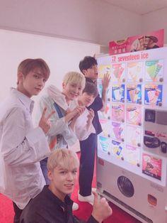 Seventeen Vernon, Joshua, Seungkwan, Mingyu and Wonwoo Carat Seventeen, Seventeen Album, Seventeen Memes, Seventeen Wonwoo, Jeonghan, Diecisiete Wonwoo, Hoshi, Vernon, Astro Sanha