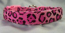 Hot Pink Leopard Dog Collar